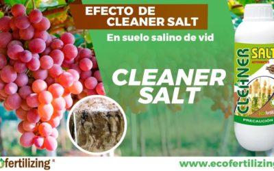 Efecto de Cleaner Salt ® en la mejora de características químicas de un suelo salino en el cultivo de vid