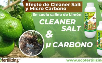 EFECTO DE CLEANER SALT Y MICRO CARBONO EN LAS CARACTERÍSTICAS QUÍMICAS DE UN SUELO SALINO EN EL CULTIVO DE LIMÓN