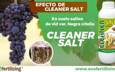 EFECTO DE CLEANER SALT® EN LA MEJORA DE LAS CARACTERÍSTICAS QUÍMICAS DE UN SUELO SALINO EN EL CULTIVO DE VID