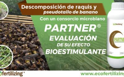 Descomposición de raquis y pseudotallo de banano con un consorcio microbiano (PARTNER®) y evaluación de su efecto bioestimulante