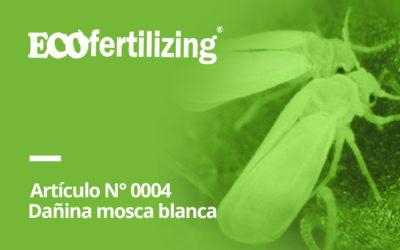 "N° 0004: La dañina ""mosca blanca"""