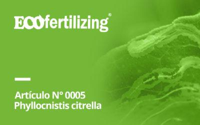 N° 0005: El temible minador de hojas de cítricos (Phyllocnistis citrella)