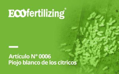 N° 0006: El piojo blanco de los cítricos (Pinnaspis aspidistrae)