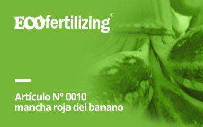 N° 0010: al causante de la mancha roja del banano Chaetanaphothrips signipennis