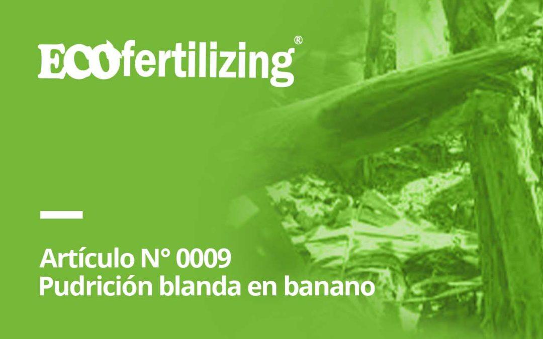 N° 0009: ¿Conocías al causante de la pudrición blanda en banano?