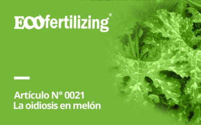 N° 0021: La oidiosis en melón