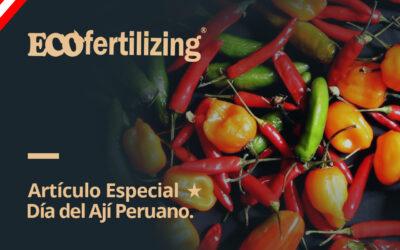 Artículo especial 02: Día Nacional del ají peruano