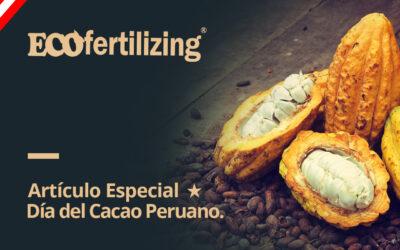 Artículo especial: Día Nacional del Cacao orgánico